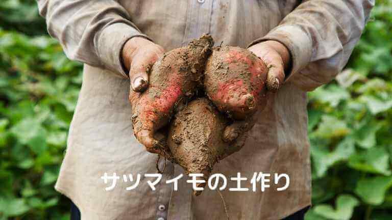 サツマイモの土作り