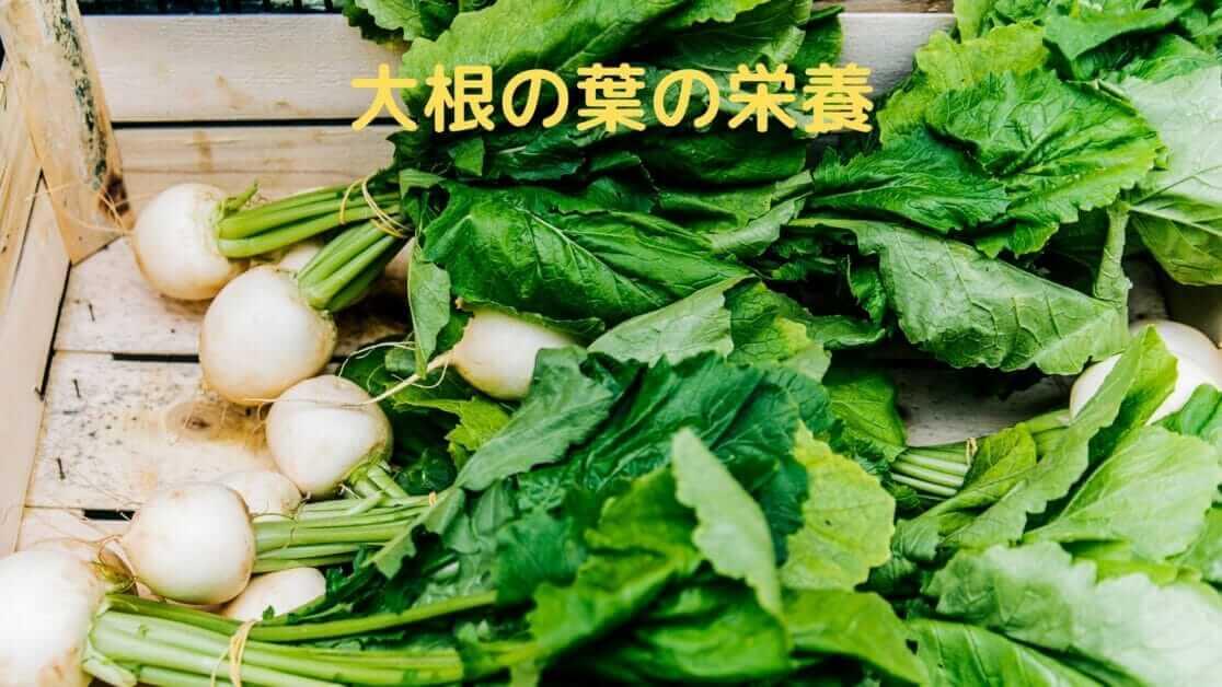 大根の葉の栄養